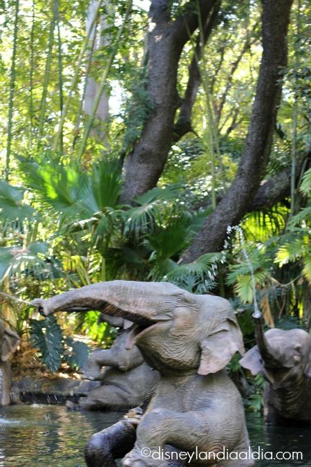 Elefantes en Jungle Cruise - Disneylandiaaldia.com