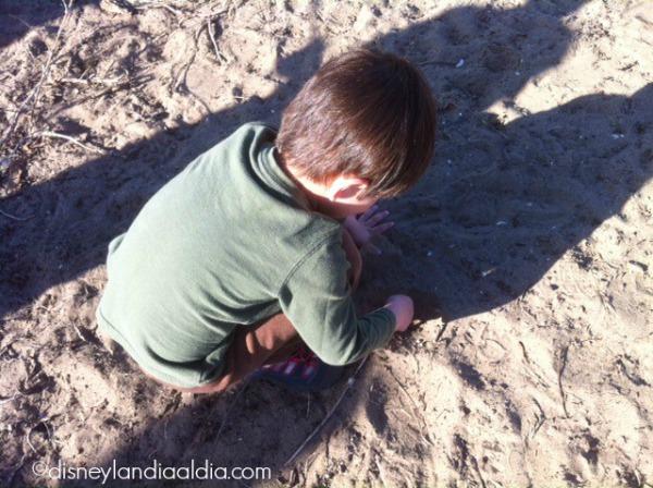 Niño cavando - disneylandiaaldia.com