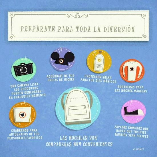 Tips Disneylandia