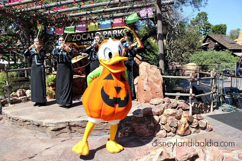 Pato Donald disfrazado de calabaza en Disneylandia - old.disneylandiaaldia.com